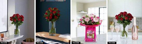 Valentine's Day Flowers & Plants