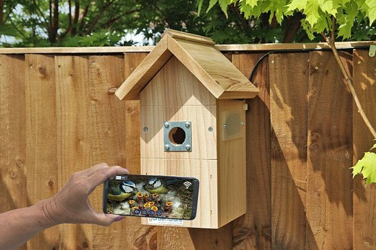 Birdwatching Trend 2021 - IP Camera Bird Box System - Pitched Roof: £144.95!