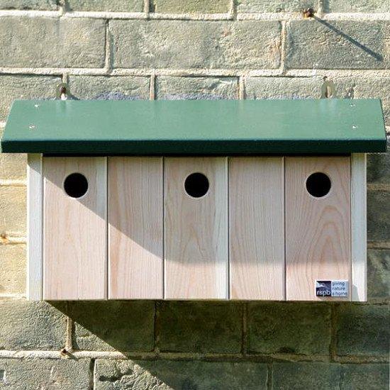 Birdwatching Trend 2021 - RSPB Sparrow Terrace Nest Box