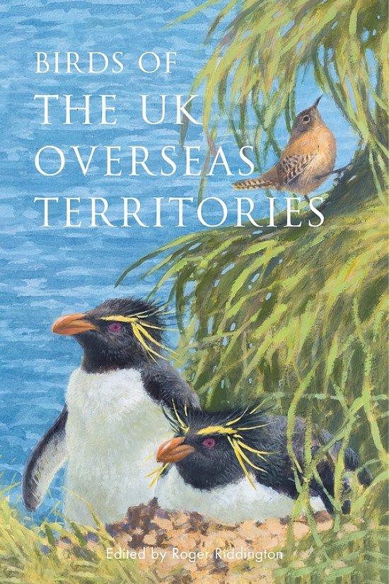 Birdwatching Trend 2021 - Birds of the UK Overseas Territories