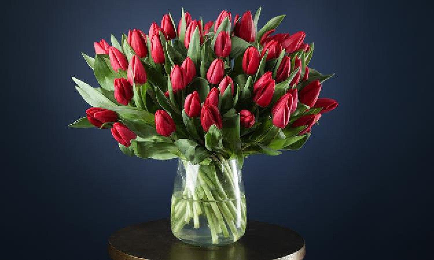 HAND-TIED BOUQUETS BY EXPERT FLORISTS - 50 RED TULIPS £35.00 + Delivery!