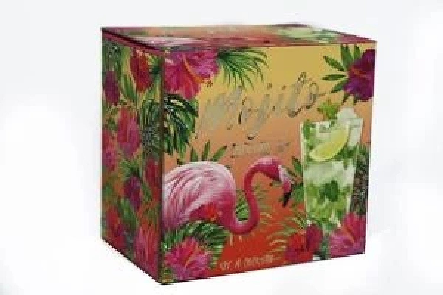 22Cm Glass Mojito Gift Set For 2 Tropical Theme Party Set Free Postage