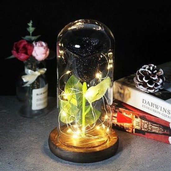 Enchanted Forever Rose in a Glass