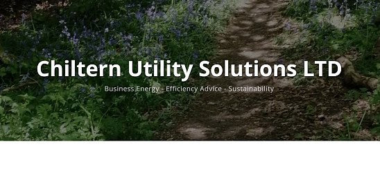 Cutting your Business Utility Spend
