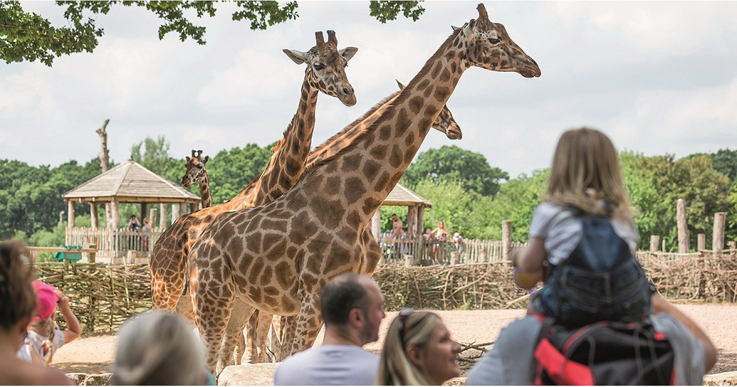 Up to 25% off Marwell Zoo with a £1 Kids Pass Trial