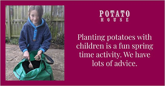 Potatoes can be planted all spring into May 🥔🥔🥔