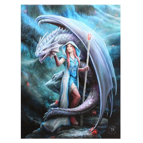 19x25cm Dragon Mage Canvas Plaque
