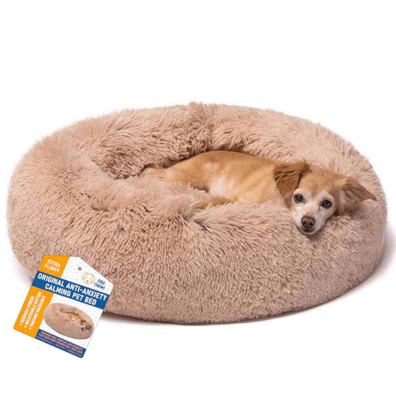 Get 10% OFF Pawsome Pet Supplies