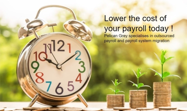 Outsource your payroll and save money now !